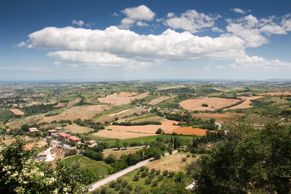 Italiaanse wijn - Le Marche
