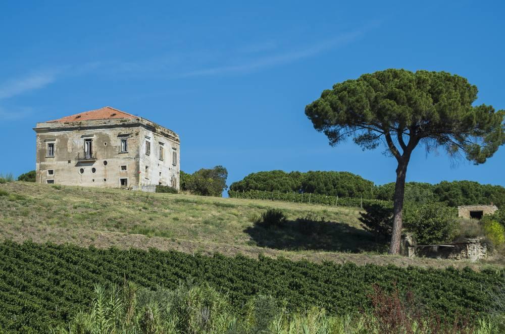 Italiaanse wijn - Basalicata