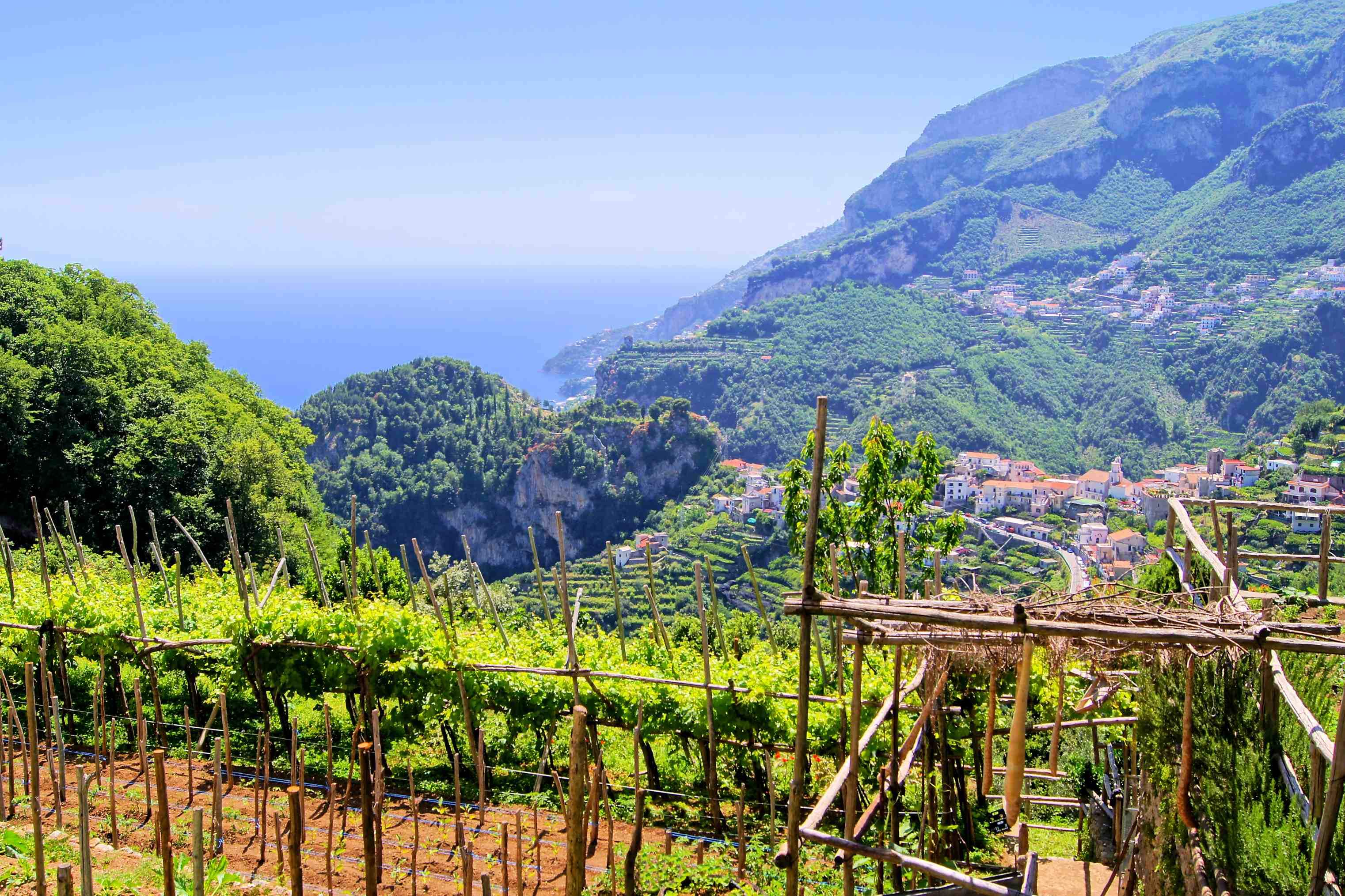 Italiaanse wijn - Campania