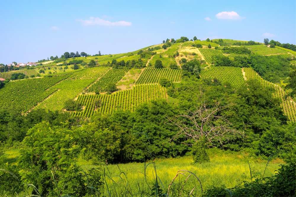 Italiaanse wijn - Lombardia