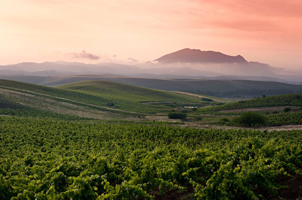 Italiaanse wijn - Siclia